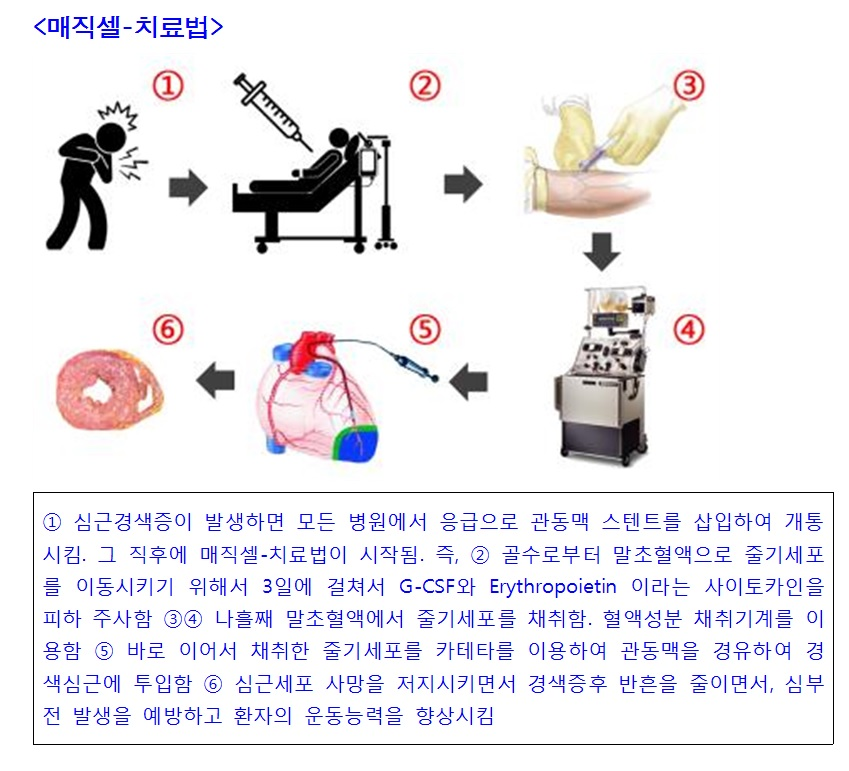 자료제공: 서울대병원